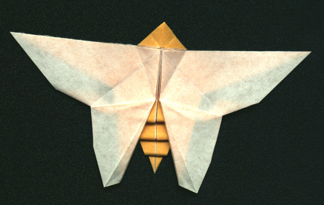 Origami Butterfly and Water bomb Diagram | 종이 접기 튜토리얼 ... | 414x652