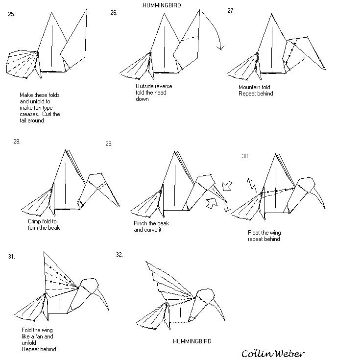 kolibri        paperfolding com  diagrams  collinweber